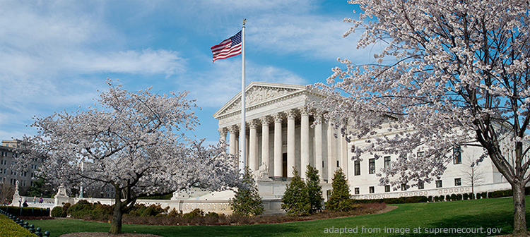Supreme Court Facade with Parkland and Blossoming Trees, adapted from image at supremecourt.gov