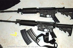 File Photo of Two AR-15 Rifles and Two Clips, adapted from image at cbp.gov